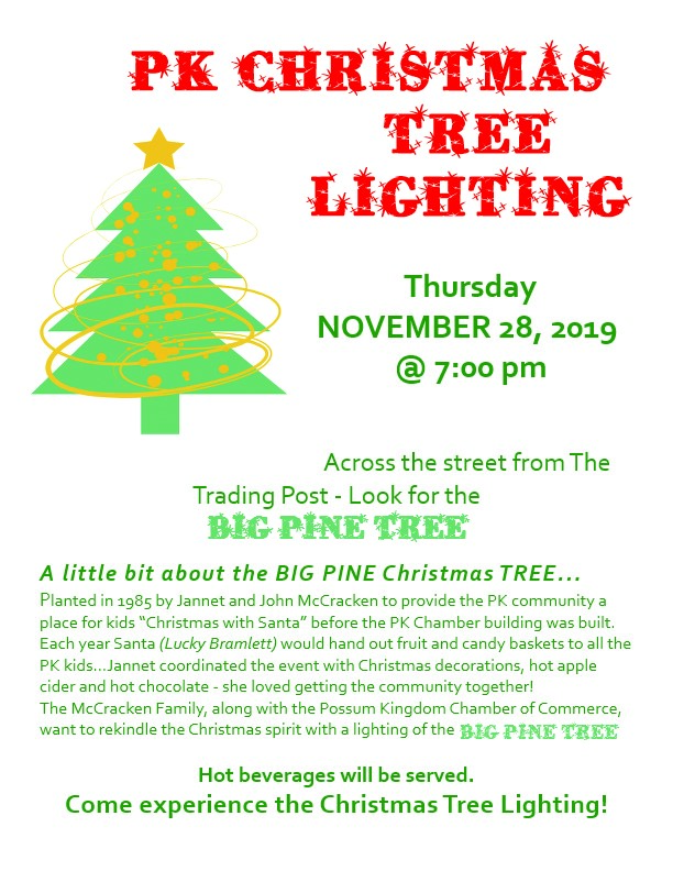2019 christmas tree lighting